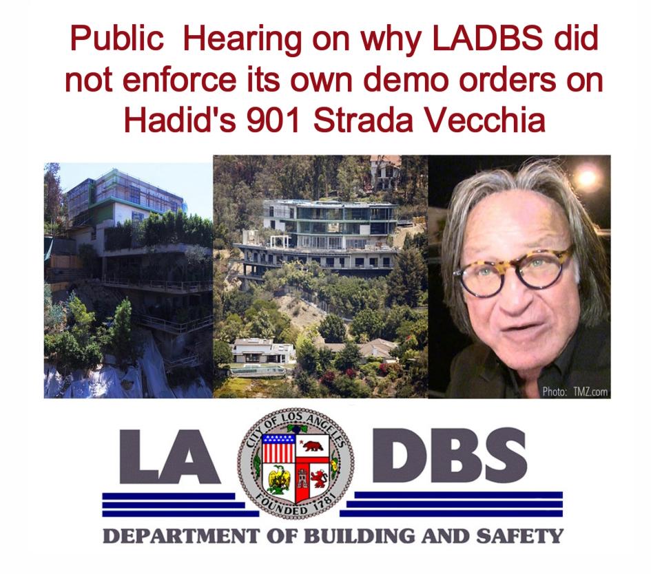 Hadid BBSC Hearing.jpg