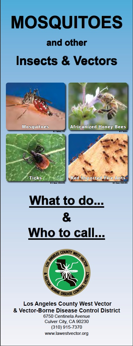 Mosquitos and other Insects & Vectors.jpg