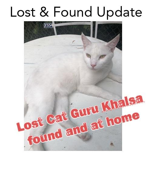Lost Cat Update Guru Khalsa.jpg