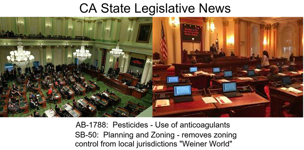 CA State Legislative News 1000.jpg