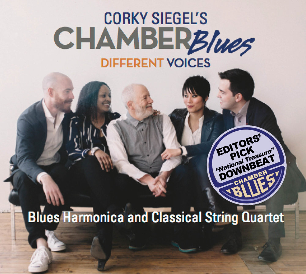 DIFFERENT VOICES is the latest Chamber Blues album. See the extraordinary rave reviews