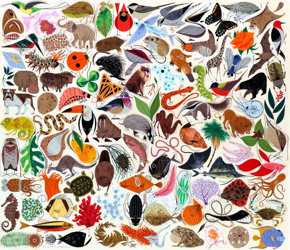 Today's illustrator obsession…Charley Harper.  Alright, fine…I a little obsessed with his style everyday. Aren't you?! I mean, look at this!