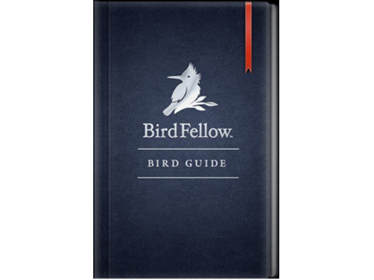 birdfellow1.png