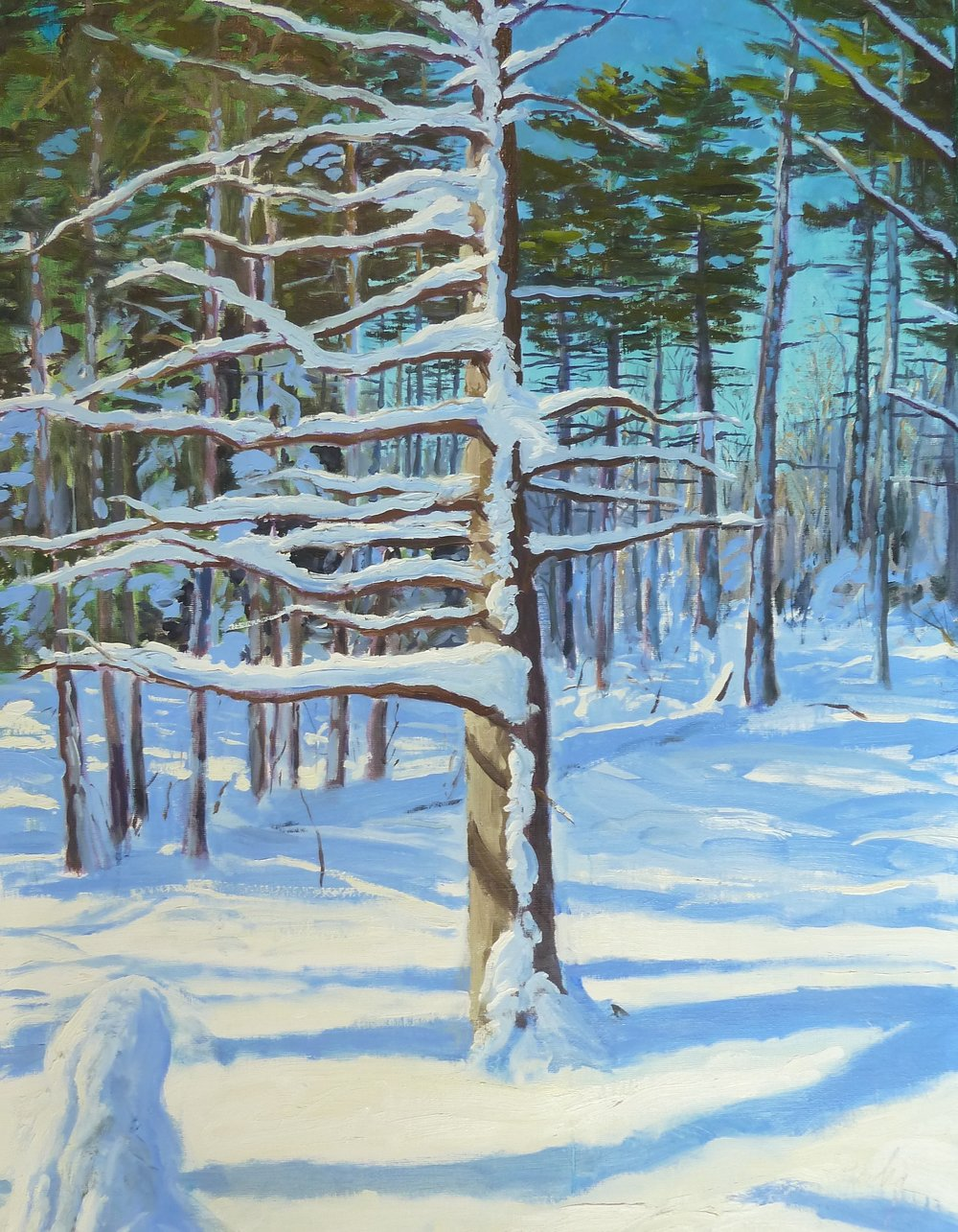 Fresh Snow, oil on linen, 30x40.