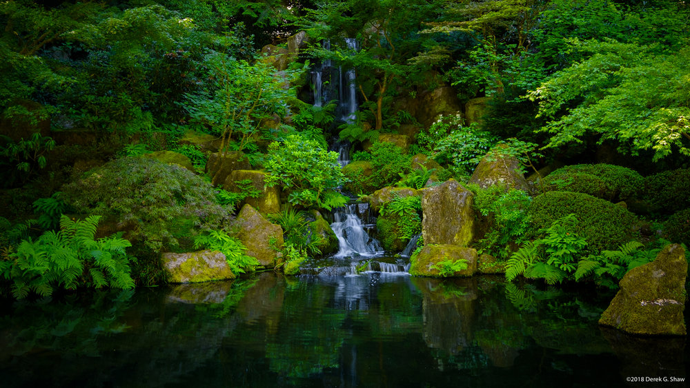 A Tranquil Waterfall