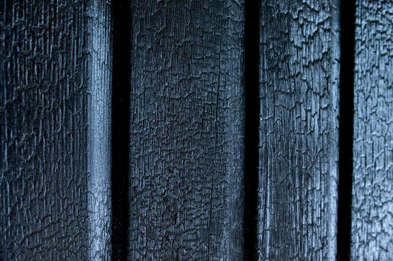 Cedar-gator skin