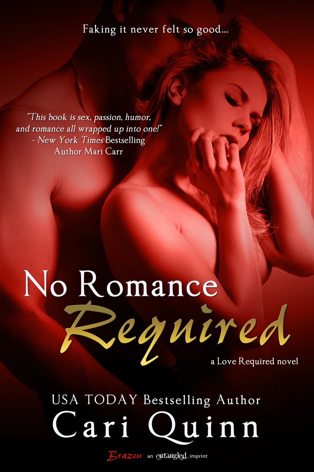 Cari Quinn No Romance Required Love Required 3.jpg