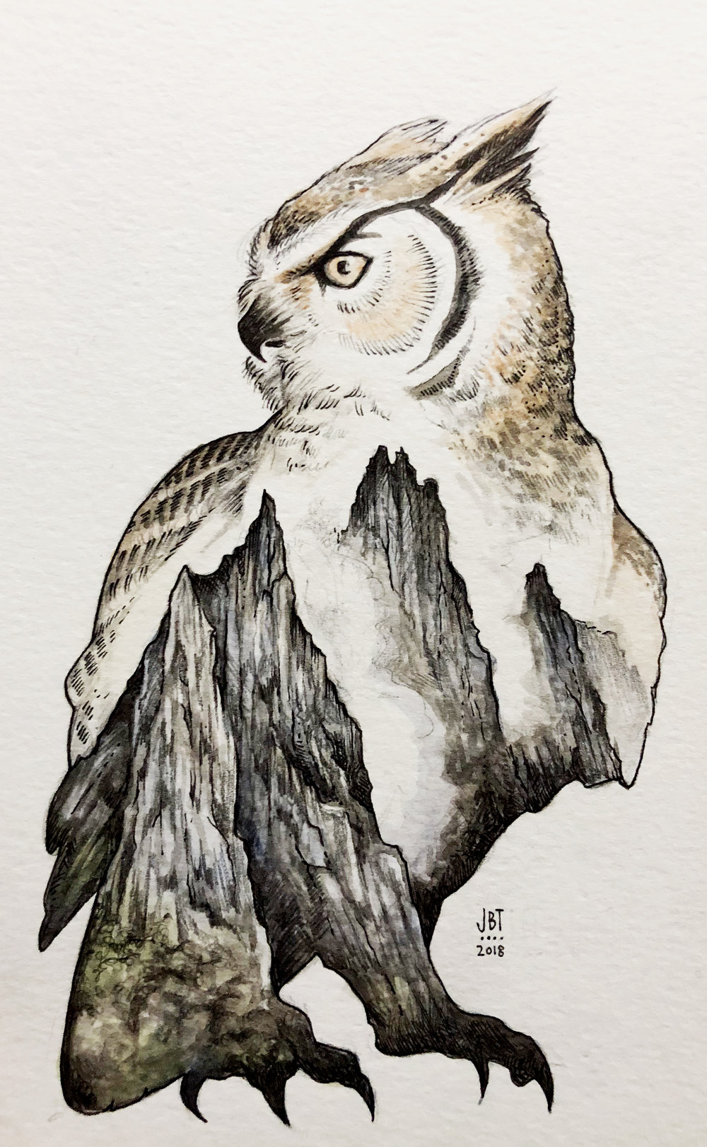 El Buho Owl Mountain2.jpg