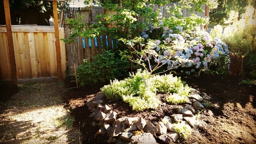 Entry path gets new mulch. The old garden awaits its makeover.