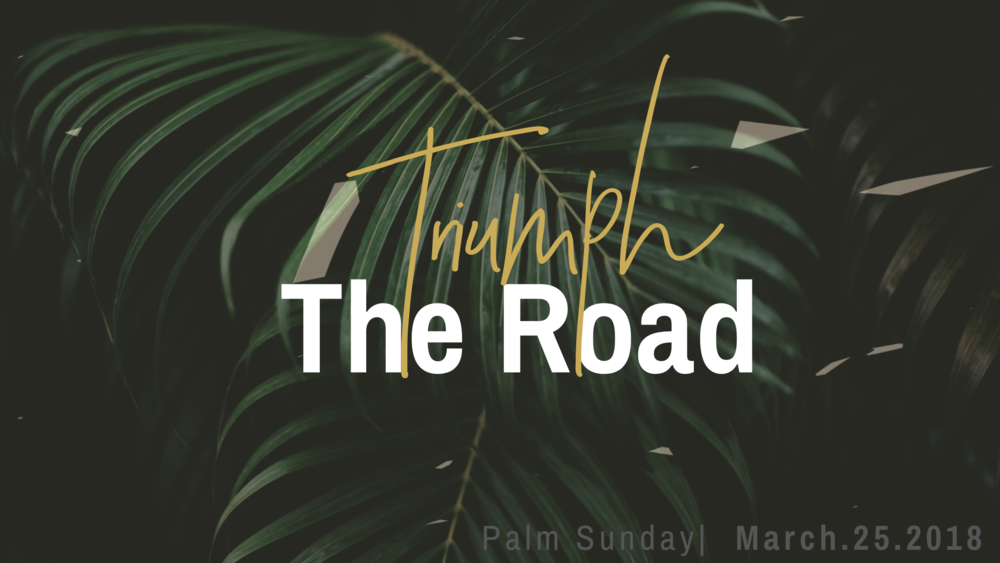 palmsunday2018wide.PNG