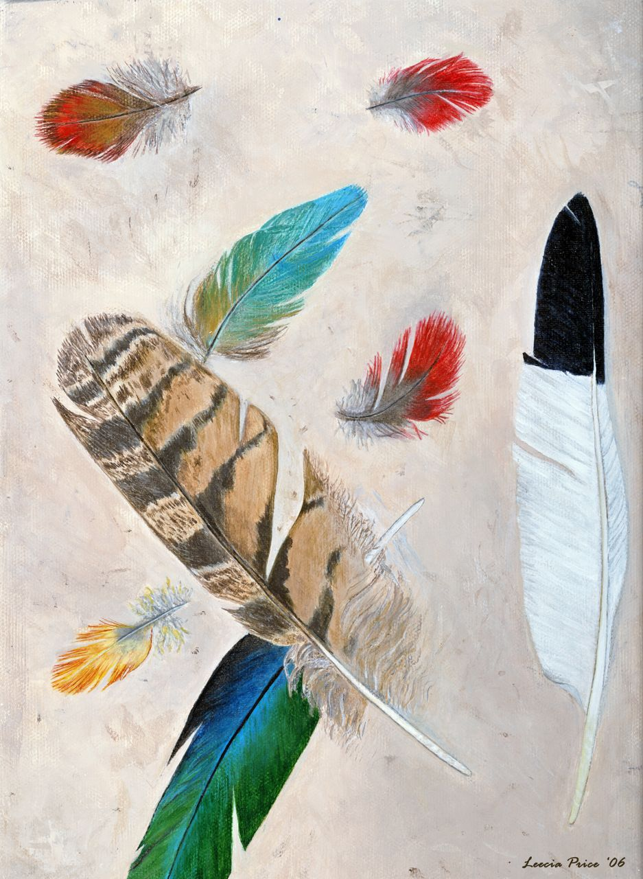 "Feathers, acrylic on canvas 9x12"""