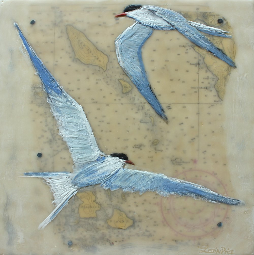 Common Terns and Ship Island