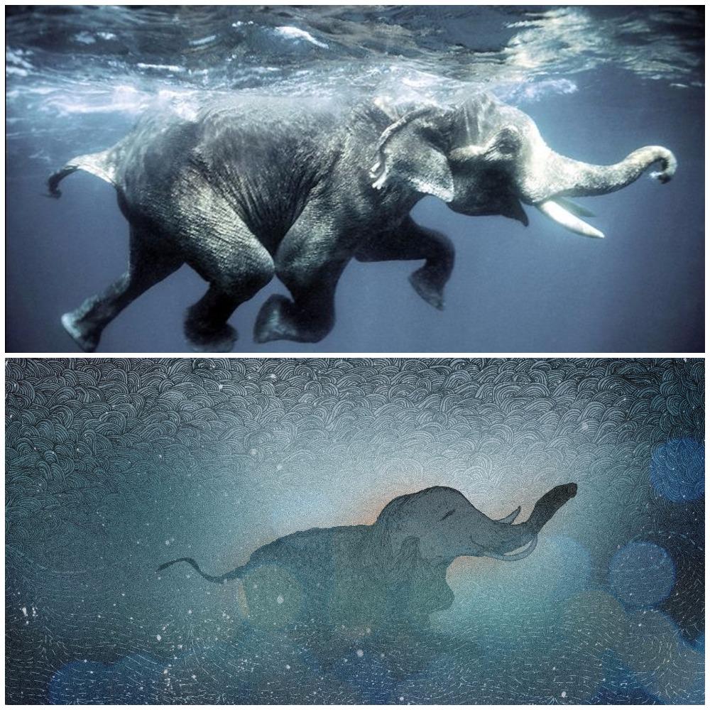 Merger Andreea elephant.jpg