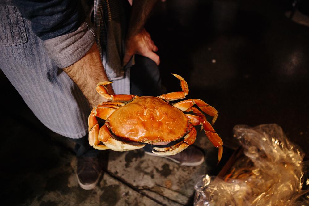 CrabFeed_Calisch_WEB-6.jpg