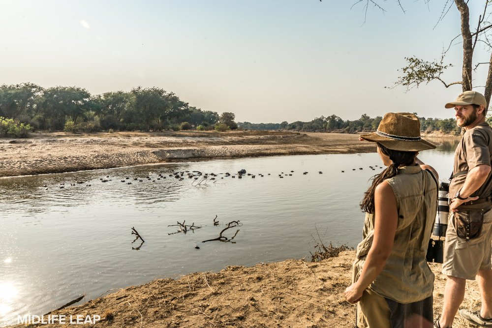 mwaleshi-north-luangwa-walking-safari-river.jpg