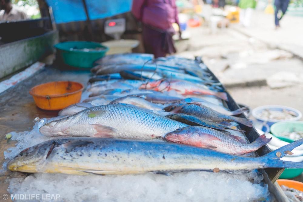 fishermen-fort kochi-cochin-kerela