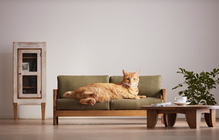 cat furniture from Okawa Kagu.jpg