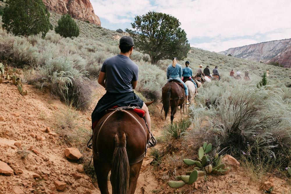 Canyon trail ride 1