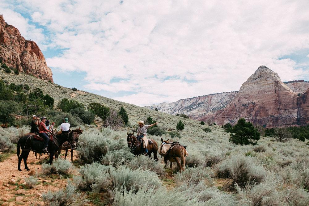 Canyon trail ride 2