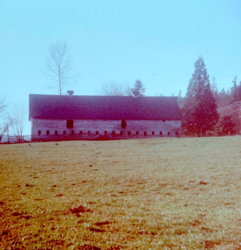 The massive barn measured 40′ x 110′, with a soaring second-story hayloft.