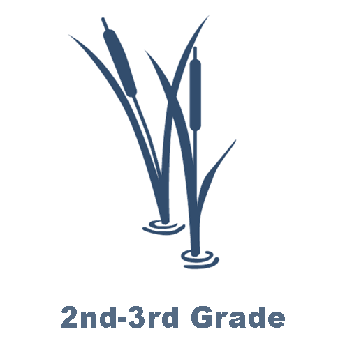 2-3rd Grade.png