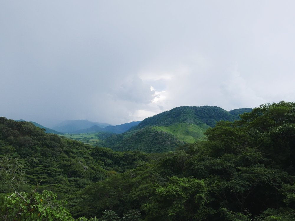 The mountains east of Puerto Vallarta are as steep as they are green.