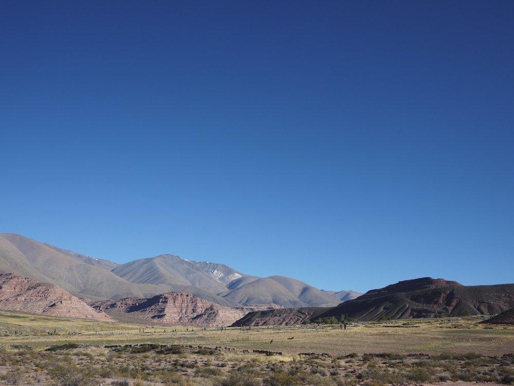 Brown desert gettin' greener.
