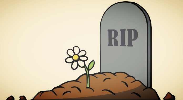 RIP-фундаментальный анализ