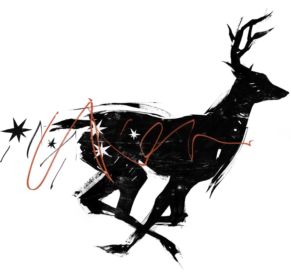 fotd.deer.work.jpg