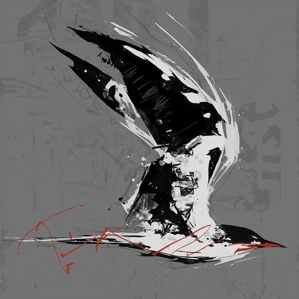 tern.work.jpg