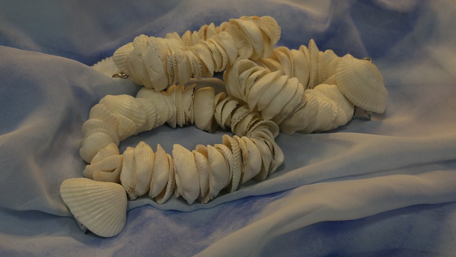 Angel Shell Bracelets.jpg