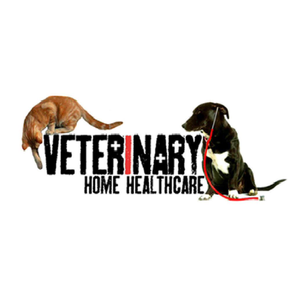 veterinary home healthcare.jpg