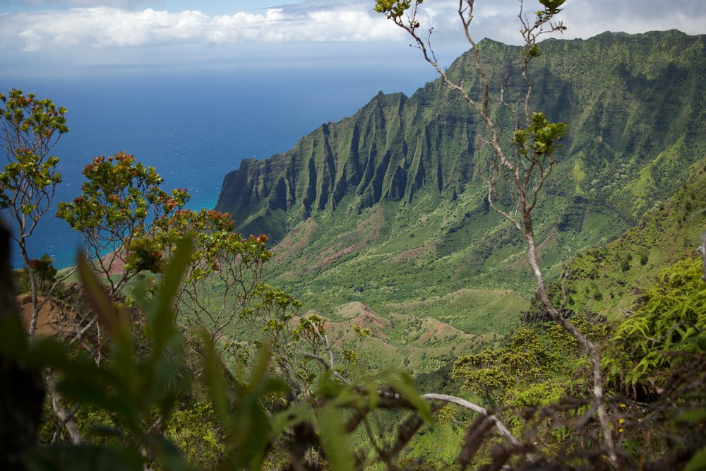My absolute favorite place in the whole entire world Hawaii, USA