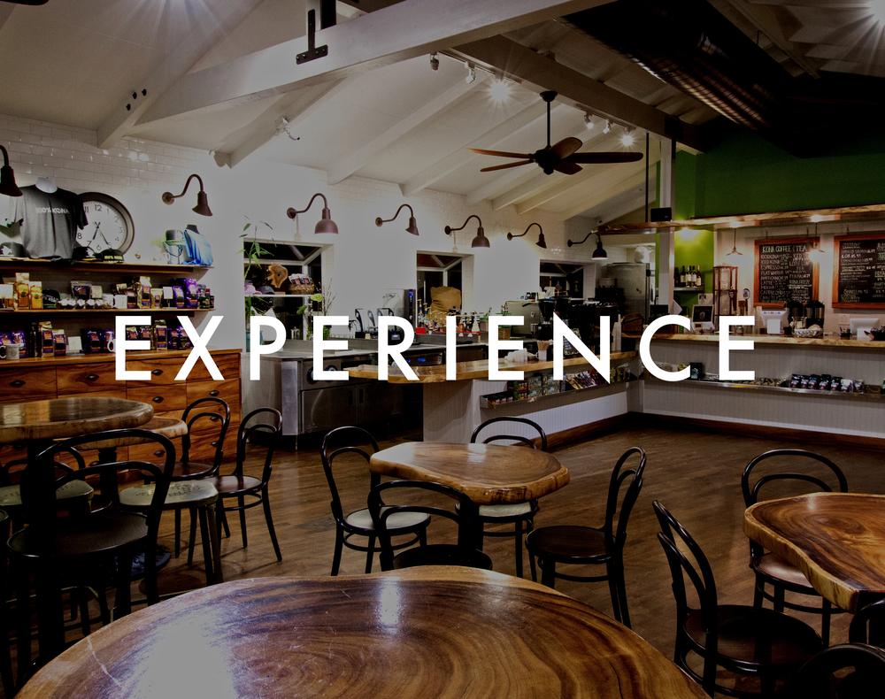 Experience.jpg