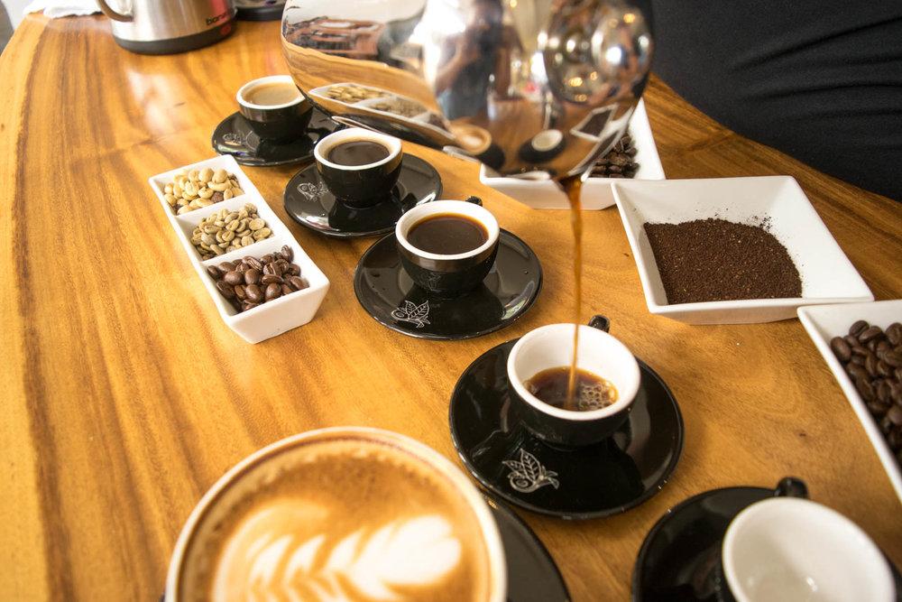 Kona Coffee Tasting