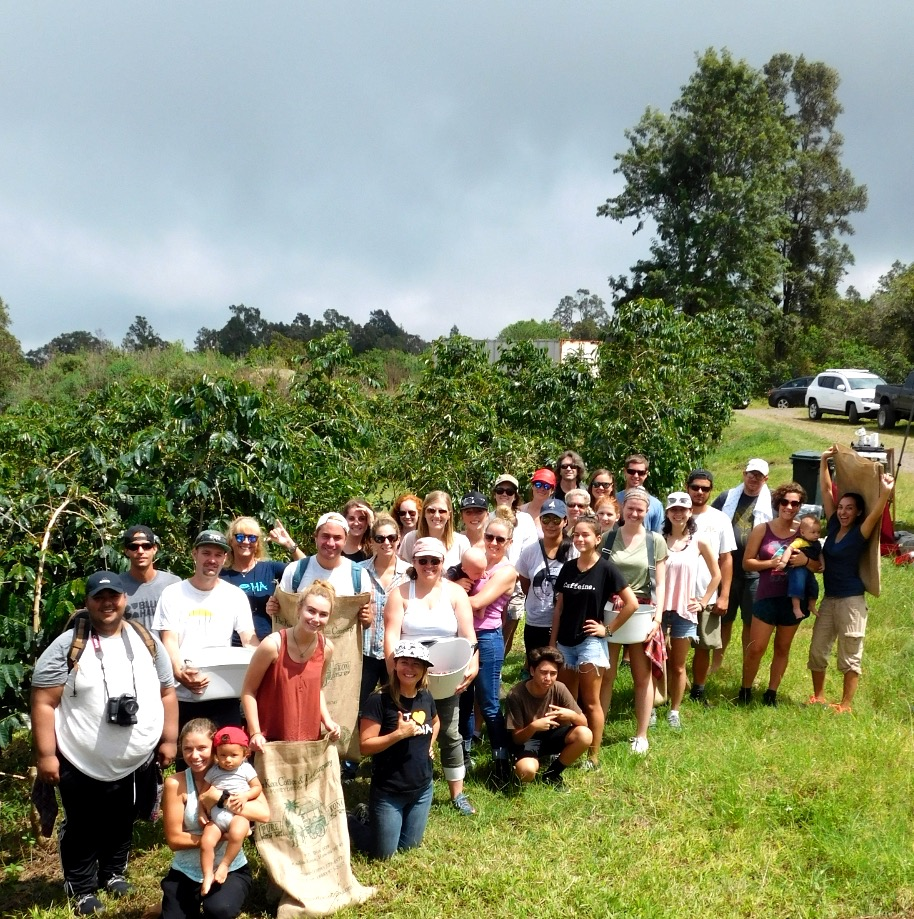 Our awesome group of pickers. PHOTO: Cynthia Crabtree