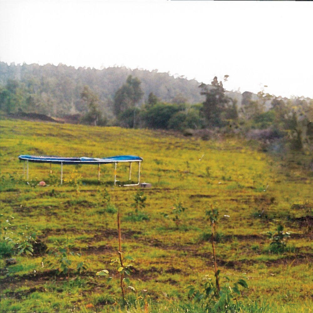 1999 - An adjoining 99 acres were added to the farm and a trampoline was put out in the field for us.
