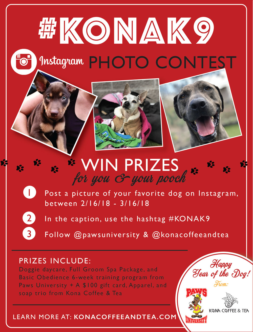 #KONAK9 Photo Contest Dog