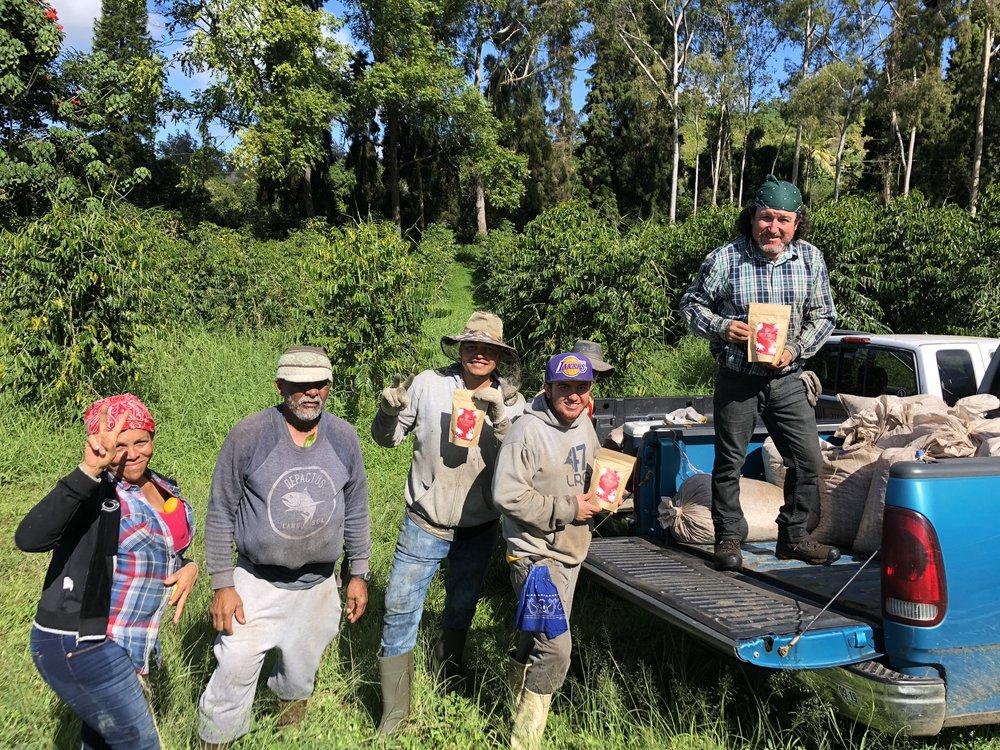 Our coffee picking crew on a harvest day at the Malia Ohana farm. PHOTO: Malia Bolton Hind