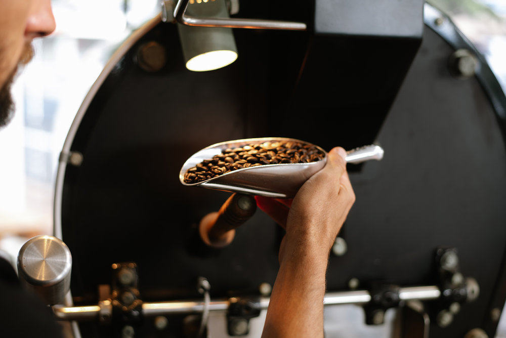 Danny Bolton inspecting coffee in the roasting process. PHOTO: Blake Wisz