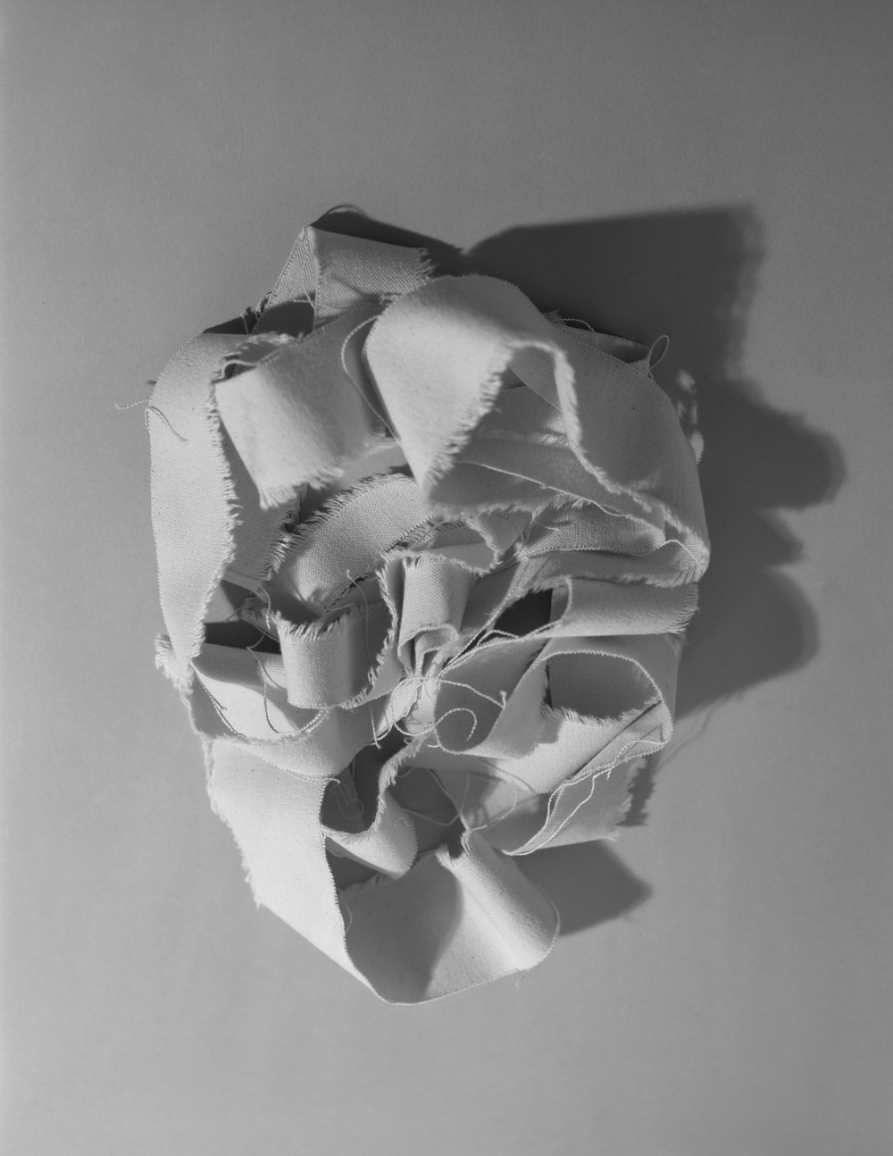 V (The Head),C-Print, 17 x 22 inches, 2011