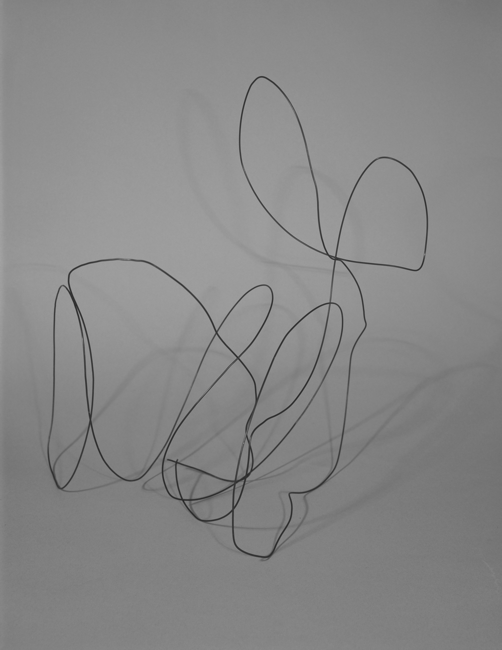 IV (Wire Shape), C-Print, 17 x 22 inches, 2011