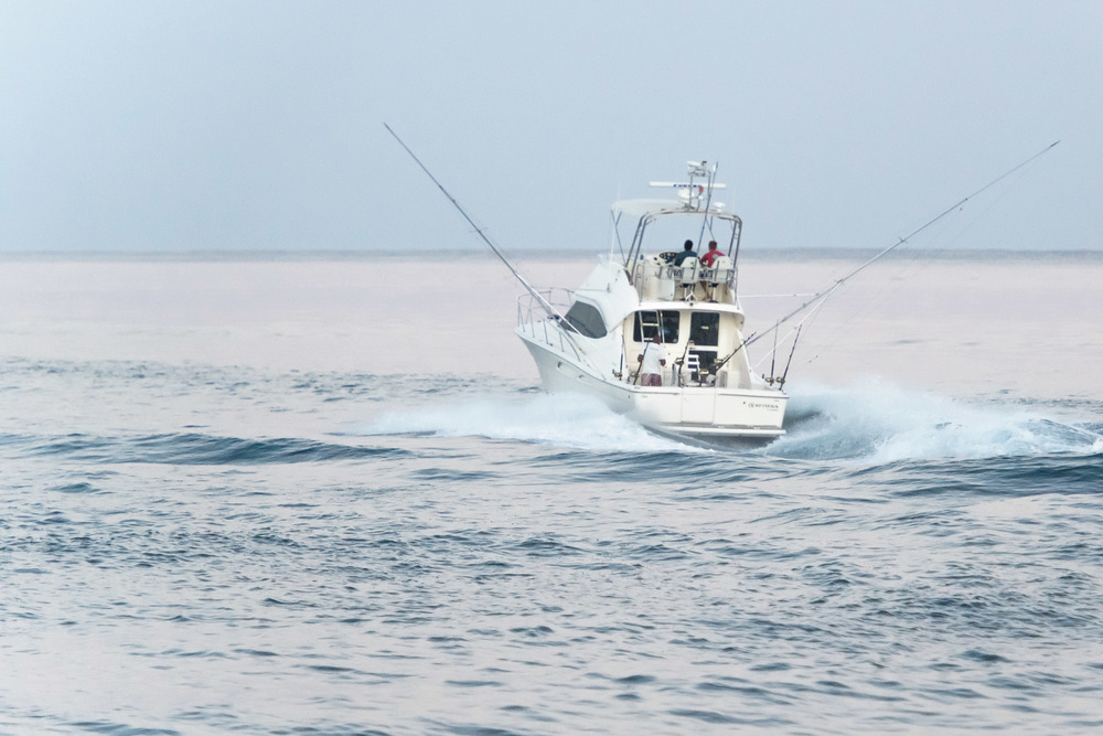 Mru Billfish Release - Day2-21 - Copy.jpg