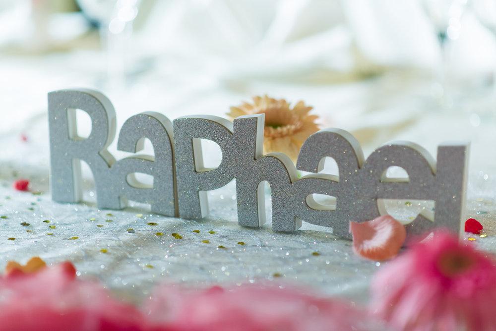 Celine and Raphael - 23-11-16-452.jpg