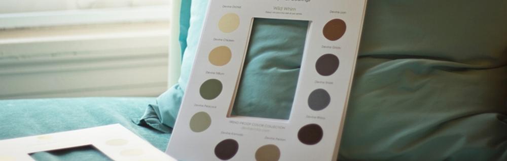 Devine Color Consulting