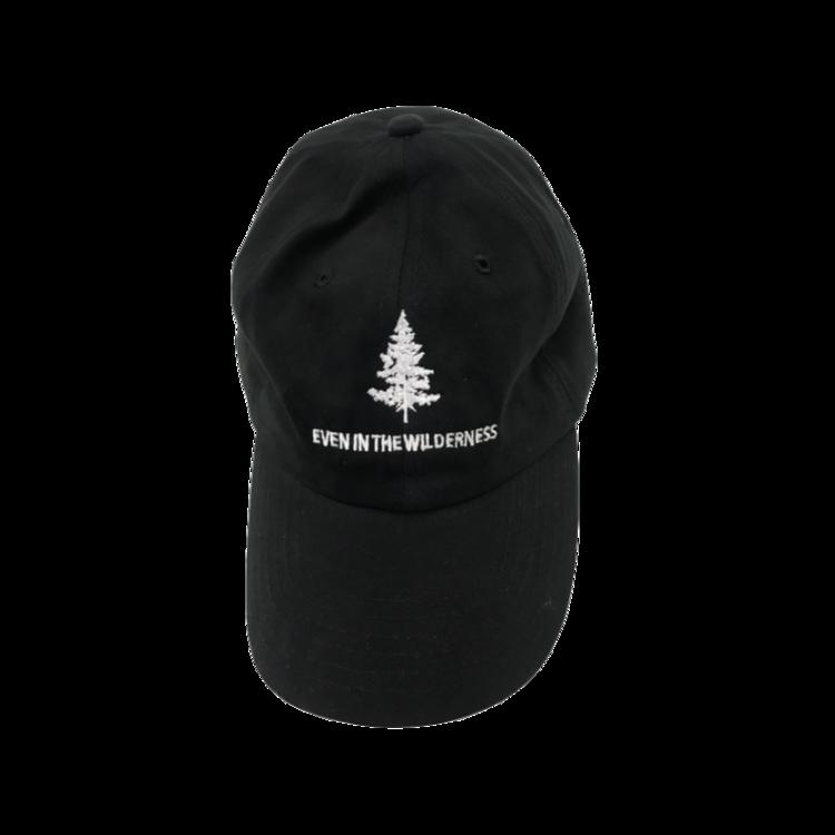 1159250947 Wilderness Dad Hat. Untitled design (2).png