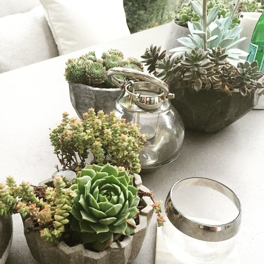 A table full of succulents is such an easy way to make your outdoor table stand out without the money and maintenance of fresh flowers. They are easy to keep alive and thrive outdoors. I like to make my own arrangements by visiting my local flower mart or plant store and mixing different style concrete or stone pots add to that curated vibe. Mix in some fun glass lanterns so when your dinner or party goes into the evening they can add some warm ambient light to your table.