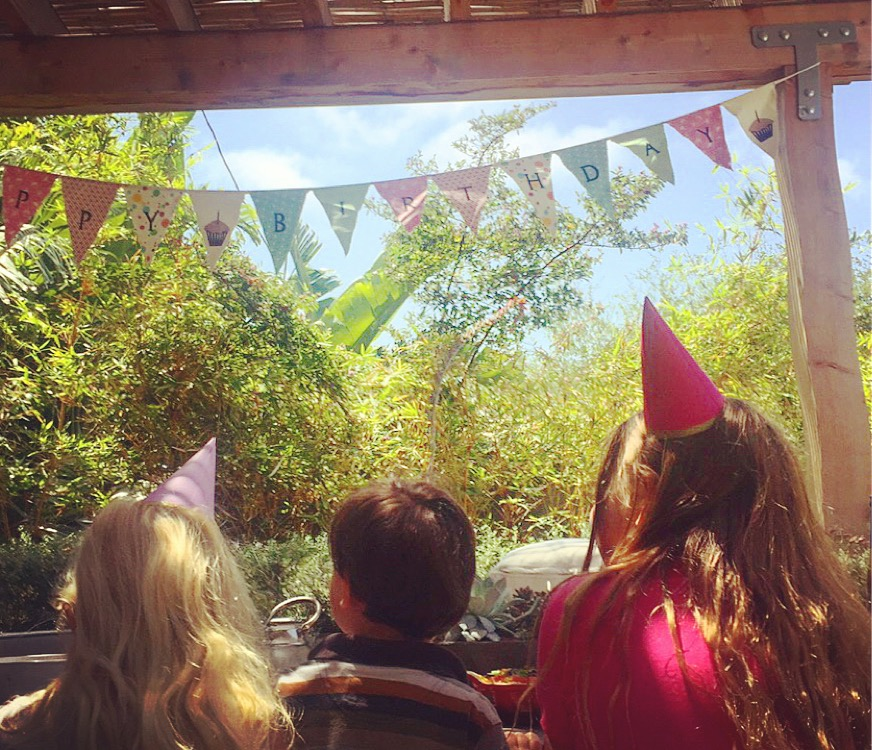 I saved this bunting from Van's first birthday and I use it every year!