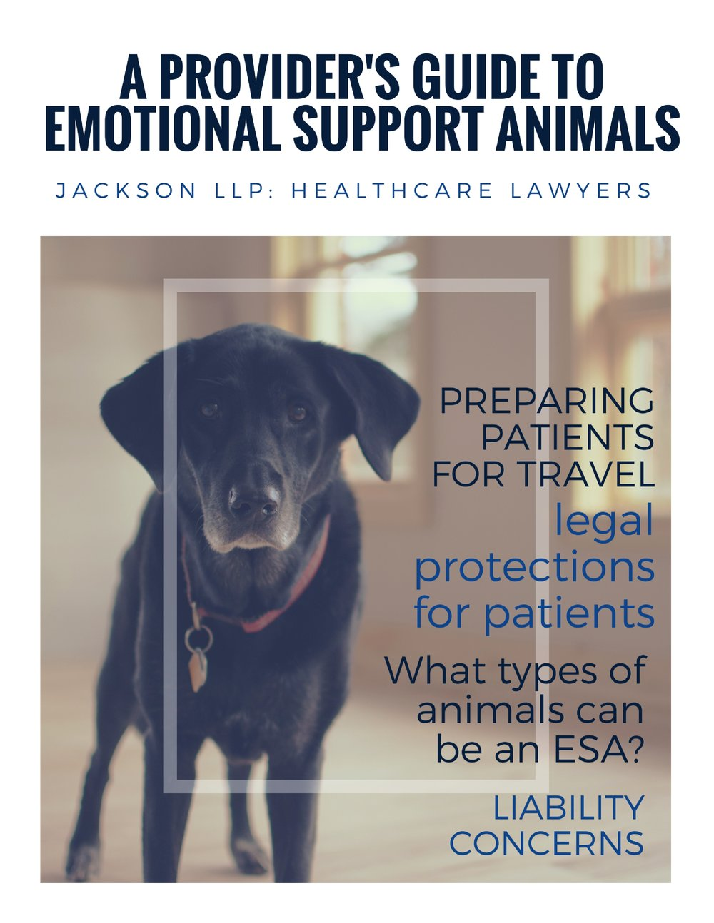 a provider's guide_ emotional support animals.jpg