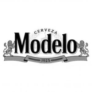 modelo logo web.jpg